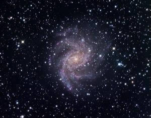 Foto - NGC 6946