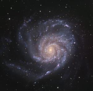 Foto M101