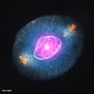 This gallery shows four planetary nebulas from the first systematic survey of such objects in the solar neighborhood made with NASA's Chandra X-ray Observatory. The planetary nebulas shown here are NGC 6543 (aka the Cat's Eye), NGC 7662, NGC 7009 and NGC 6826. X-ray emission from Chandra is colored purple and optical emission from the Hubble Space Telescope is colored red, green and blue. A planetary nebula is a phase of stellar evolution that the sun should experience several billion years from now, when it expands to become a red giant and then sheds most of its outer layers, leaving behind a hot core that contracts to form a dense white dwarf star. A wind from the hot core rams into the ejected atmosphere, creating the shell-like filamentary structures seen with optical telescopes. The diffuse X-ray emission is caused by shock waves as the wind collides with the ejected atmosphere. The properties of the X-ray point sources in the center of about half of the planetary nebulas suggest that many central stars responsible for ejecting planetary nebulas have companion stars.