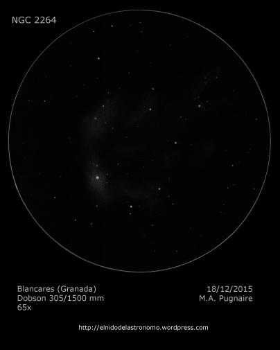 NGC 2264.png