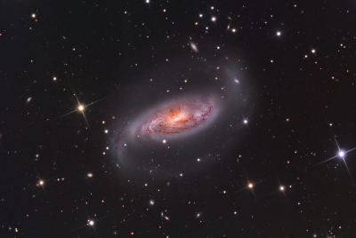 Foto NGC 1808