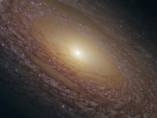 Foto NGC 2841.jpg
