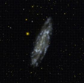 Foto NGC 4236.jpg