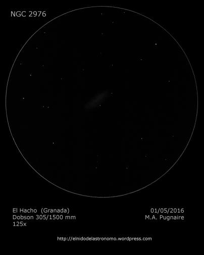 NGC 2976