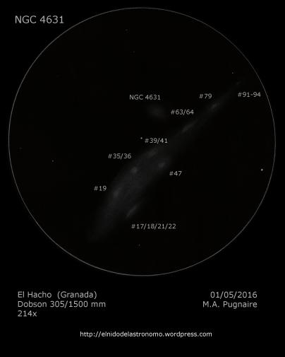 NGC 4631 detalles