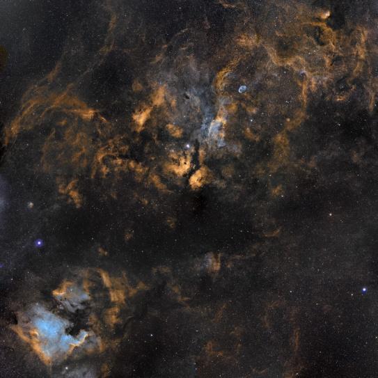 Foto Cygnus X