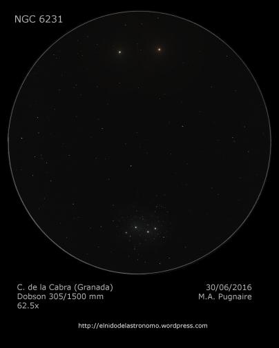 NGC 6231.png
