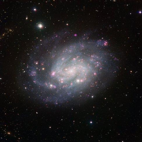 Foto NGC 300.jpg