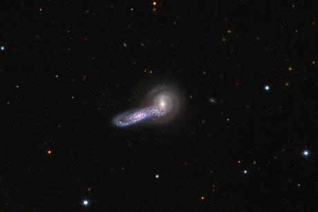 Foto NGC 5544