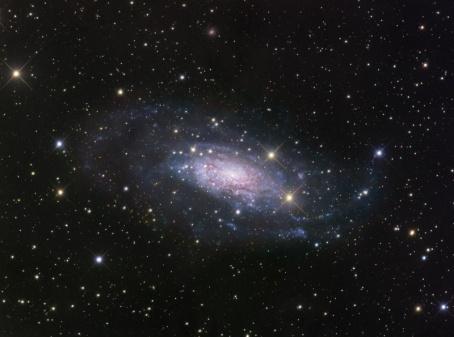 Foto NGC 3621