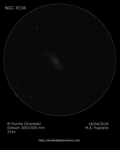 NGC 4536.png